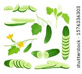 cucumber crop with sliced... | Shutterstock .eps vector #1576336303