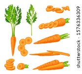 whole and cut into slices... | Shutterstock .eps vector #1576336309