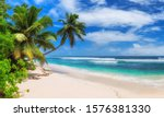 paradise sunny beach with palms ... | Shutterstock . vector #1576381330