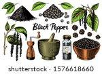 black pepper set in vintage... | Shutterstock .eps vector #1576618660
