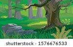beautyful forest landscape...   Shutterstock . vector #1576676533