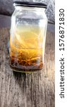 Small photo of alcohol tincture Chinese medicine. ginseng. cordyceps