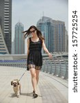 Stock photo beautiful happy young woman in black dress with cute small dog puppy have fun on street 157725254