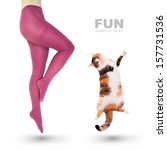 Stock photo crazy fun woman and her cat jumping 157731536
