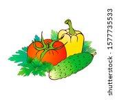hand drawn realistic farm... | Shutterstock . vector #1577735533