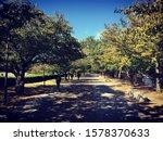 abstract backgrounds textures...   Shutterstock . vector #1578370633