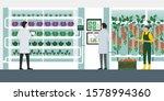 indoors hydroponics vertical... | Shutterstock .eps vector #1578994360