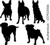 vector set of silhouettes of... | Shutterstock .eps vector #157923506