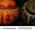 Melon Breeding For Cosmetic...