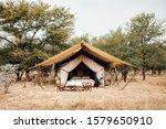 Jun 22  2011 Serengeti ...