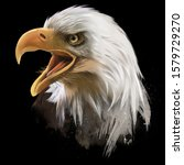 the american bald eagle  head.... | Shutterstock . vector #1579729270