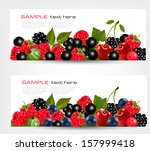 Two Banners With Fresh Berries...