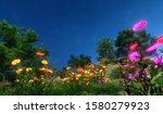 Beautiful Fairy Meadow On A...