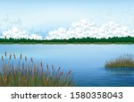 Lake Scenery And Reed Grass....