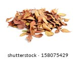 Heap Of Dry Leaves. Isolated O...
