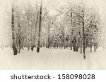 Winter Forest Covered With Sno...