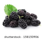 mulberry with leaf isolated on... | Shutterstock . vector #158150906