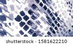 Gray Snake Skin Pattern. Gray...