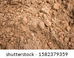 Sandy Loam Soil Background....