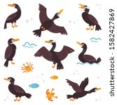 double crested cormorant on a... | Shutterstock .eps vector #1582427869