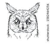 owl sketch. hand drawn vector...   Shutterstock .eps vector #1582464256