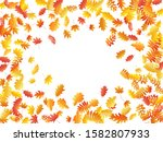 oak  maple  wild ash rowan... | Shutterstock .eps vector #1582807933