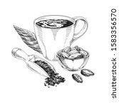 cocoa products hand drawn... | Shutterstock .eps vector #1583356570