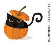 Black Cat Fit In Pumpkins...