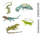 Set Of Reptile Realistic Flat...