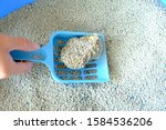 Hand holding blue plastic scoop cleaning clumping sand from cat litter box