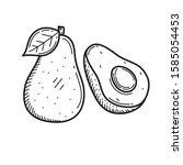 avocado vector illustration... | Shutterstock .eps vector #1585054453