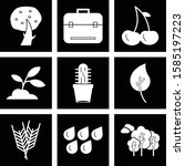 set of 9 quality icon for your ... | Shutterstock .eps vector #1585197223