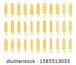 set of wheat ears icons and... | Shutterstock .eps vector #1585513033
