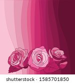 beautiful roses on a background ...   Shutterstock .eps vector #1585701850