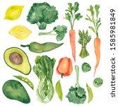watercolor organic vegetables... | Shutterstock . vector #1585981849