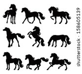 Horses Silhouette Collection ...