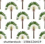 seamless pattern with palm... | Shutterstock .eps vector #1586126419