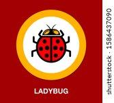 vector insect illustration.... | Shutterstock .eps vector #1586437090