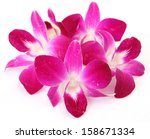 pink orchid  | Shutterstock . vector #158671334