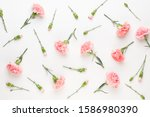 Pink Carnation Flowers On White ...