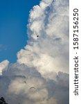 dramatic white cumulonimbus...