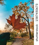 Autumn Season In Germany.  A...