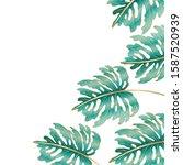 tropical green leaves design ... | Shutterstock .eps vector #1587520939