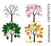 Set Of Four Vector Trees Show...