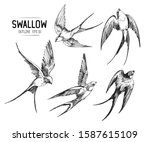 set of a flying swallows. hand... | Shutterstock .eps vector #1587615109