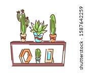 shelf with cactus color line...