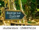 Scavenger hunt this way signpost in lush forest woodland