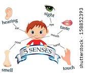 5 senses educational concept... | Shutterstock .eps vector #158852393