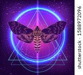 moth over mandala. beautiful... | Shutterstock .eps vector #1588972096