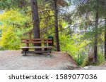 Brown Wooden Bench In The Park...
